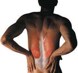 Травмы позвоночника – виды и лечение