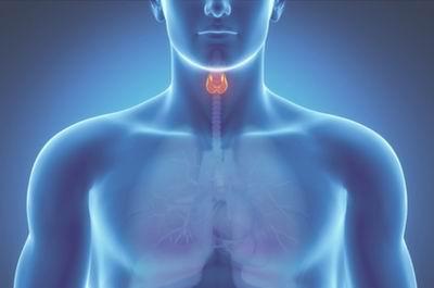 Диффузный токсический зоб: причины и симптомы